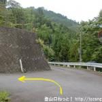 大塔支所から唐笠山の登山口に行く途中の分岐