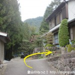 下阪本バス停からふるさとの森公園に向かう途中の右カーブ