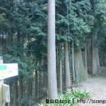 鳳閣寺横の百貝岳への登山道