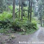 三沢峠に向かう林道