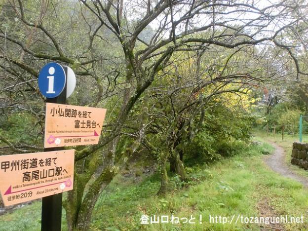 高尾梅林の遊歩道入口