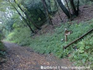 滝山城跡(滝山丘陵ハイキングコース入口(東側)前