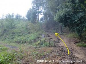広徳寺から今熊神社に行く途中の登山道分岐1