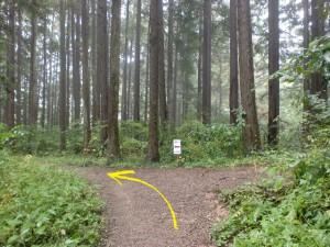 広徳寺から今熊神社に行く途中の登山道分岐2