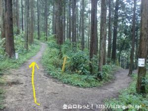 広徳寺から今熊神社に行く途中の金剛の滝への分岐