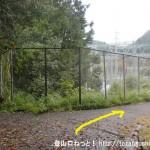 広徳寺から今熊神社に行く途中で登山道から変電所横の車道に出たところ