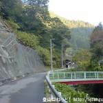 上養沢のバス停から林道を奥に進む