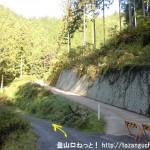 上養沢の林道の分岐