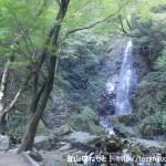 払沢の滝(檜原村)
