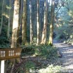 小仏峠の登り口から見る登山道