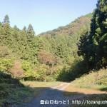 小下沢林道の狐塚峠への登り口前