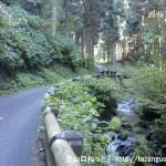 明王林道の車道