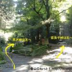 明王林道終点にある奈良子峠と底沢峠の分岐