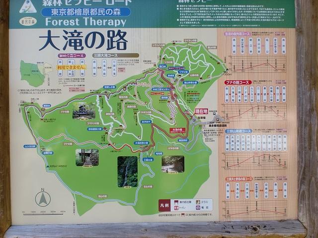 都民の森の遊歩道の案内板