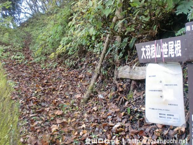 浅間尾根登山口バス停そばにある大羽根山・笹尾根の登山道入口に設置されている道標と登山道