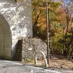 鶴の湯温泉源泉碑前の鶴の湯トンネル西口右側にある倉戸山の登山道入口