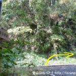 羽黒三田神社の本殿右横から登山道に入った先で車道に出てまた登山道に入りすぐに車道に出たところ