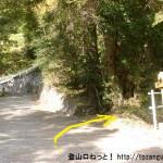 羽黒三田神社の本殿右横から登山道に入った先で車道に出てまた登山道に入るところ