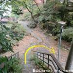 鳩ノ巣小橋に行く途中で川まで階段を下る
