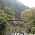 多摩川から見上げる鳩ノ巣小橋