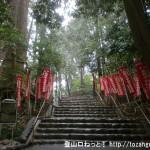 塩船観音寺の参道の石段