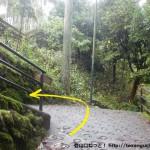 御岳渓谷の神路橋を渡ってすぐ上の分岐を左へ進む