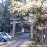 ケーブルカーの滝本駅前にある御岳神社の鳥居と神代銀杏