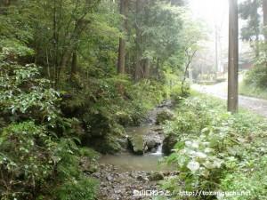 三沢峠に向かう林道沿いの沢