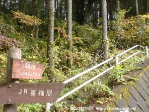 軍畑駅からほど近い榎峠にある青梅丘陵ハイキングコース入り口