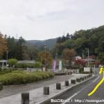 梅の公園前の車道
