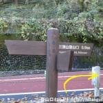 麦山の浮橋からの登山道から奥多摩周遊道路に出たところ