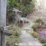 姫谷温泉横の奈良子尾根の登り口から見る奈良子峠への登山コース