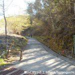 栃寄森の家の上の林道終点