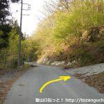 鹿岳の木々岩峠登山口前のT字路