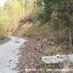 鹿岳の木々岩峠登山口前のT字路から見る木々岩峠への登山道