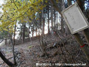 桧沢岳の登山道入口から見る桧沢岳への登山道