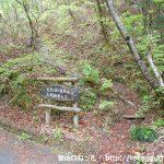 兎岩登山口から見る登山道