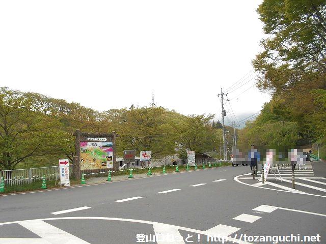 琴平丘陵の駐車場の手前の車道