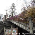 雲取山・三峰山の登山口 三峯神社にバスでアクセスする方法