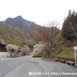 中津川バス停(西武観光バス)