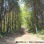 横隈山の更木側の登山口前の林道ゲート