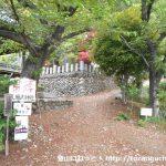 八幡神社の裏手にある鐘撞堂山の登山口(八幡山コース)