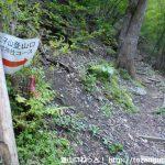 あしがくぼキャンプ場の富士浅間神社の鳥居そばに設置されてる二子山登山口(浅間神社コース)の道標