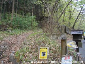 子持山の5号橋登山口から浅間への登山道を見る