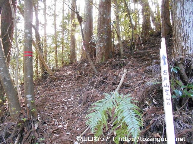 古戸山の登山口から見る登山道(愛知県東栄町)