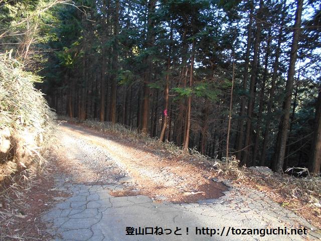 大岩岳・小岩岳の登山口となる鉄塔広場に向かう林道