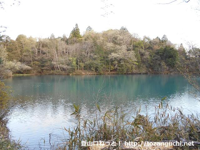 大洞池(継鹿尾山登山口)