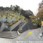 大縣神社の本殿奥の遊歩道入口