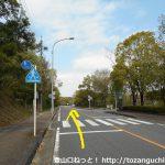 春日井市都市緑化植物園前の車道