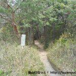 春日井市都市緑化植物園の北側にある弥勒山の登山道入口から見る登山道